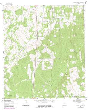 Thomas Springs USGS topographic map 29097d8