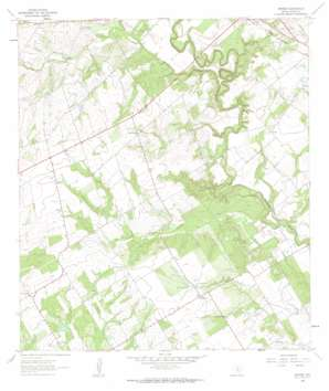 Dewees USGS topographic map 29098a2