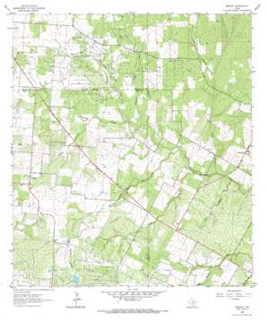 Bigfoot USGS topographic map 29098a7