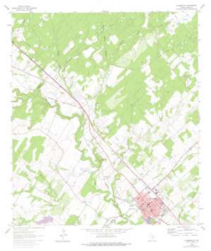 Floresville USGS topographic map 29098b2