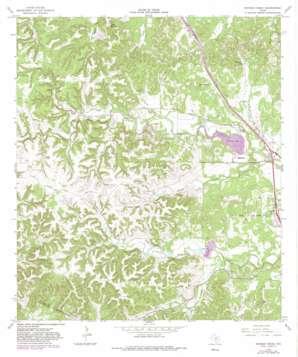 Ranger Creek topo map