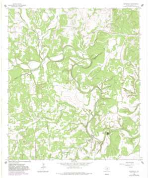 Sisterdale USGS topographic map 29098h6