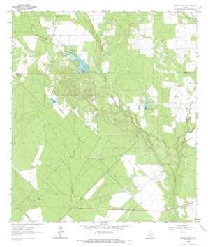 Wilson Ranch topo map
