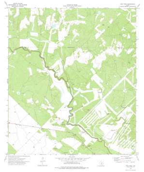 Frio Town USGS topographic map 29099a3