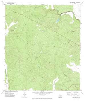Lone Tree Hill topo map