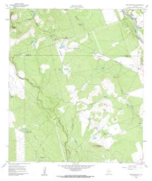 Sand Mountain USGS topographic map 29099a8