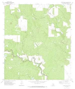 Garner Field NE USGS topographic map 29099b5