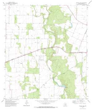 Blanco Lake USGS topographic map 29099c5
