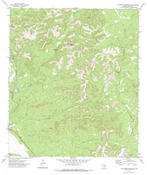 Sycamore Mountain USGS topographic map 29099d8