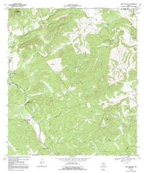 Twin Hollow topo map