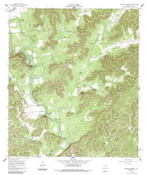 Magers Crossing topo map