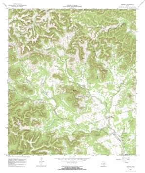 Tarpley topo map