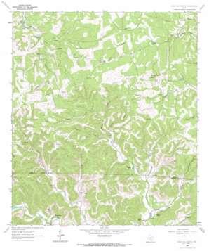Echo Hill Ranch topo map