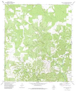 Bee Cave Hollow topo map
