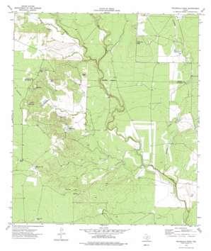 Peloncillo Peak topo map