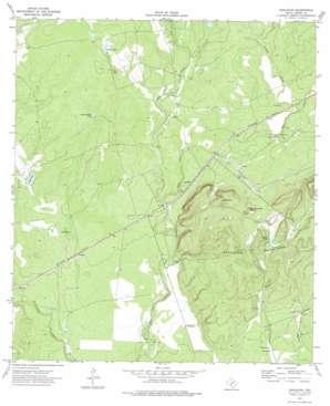 Anacacho topo map