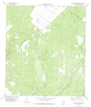 Tequesquite Creek Ne topo map