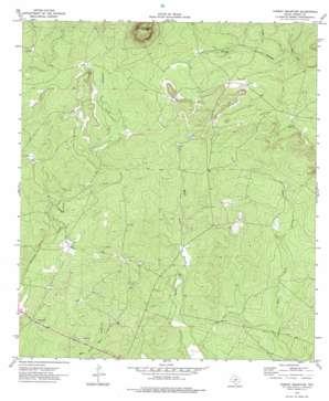 Turkey Mountain topo map