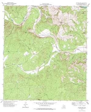 Salmon Peak topo map