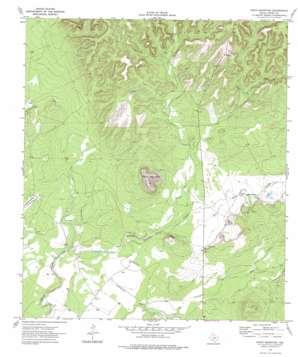 Pinto Mountain topo map