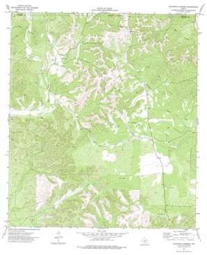 Kickapoo Caverns topo map