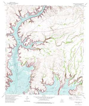 Rough Canyon topo map