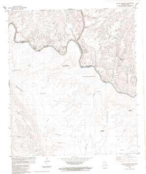 Taylor Canyon topo map