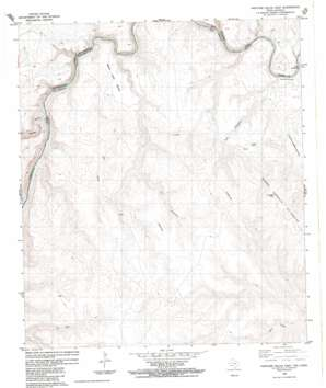 Panther Gulch East topo map