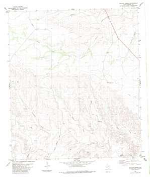 Balcon Creek USGS topographic map 29102h1