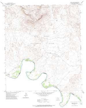 Reed Camp topo map