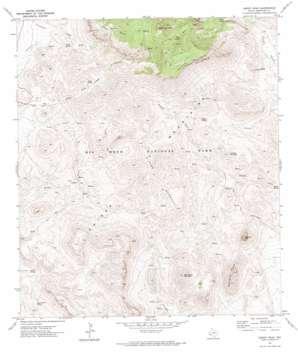 Emory Peak topo map