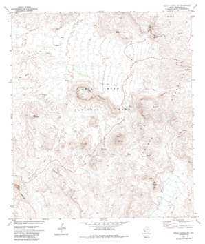 Cerro Castellan topo map