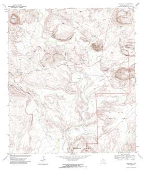 Terlingua topo map