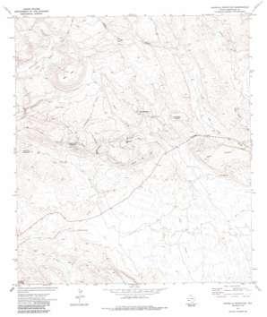 Amarilla Mountain topo map