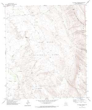 Mckinney Springs topo map