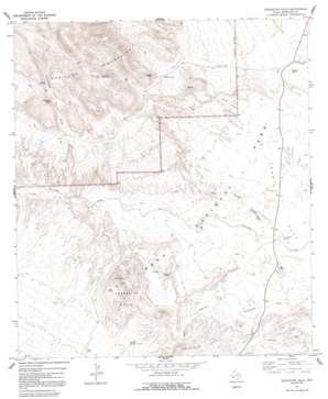 Grapevine Hills topo map