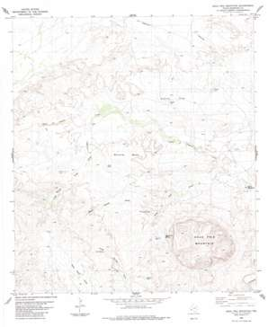 Agua Fria Mountain topo map