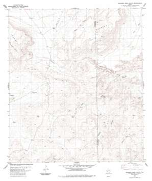 Bandero Mesa South topo map