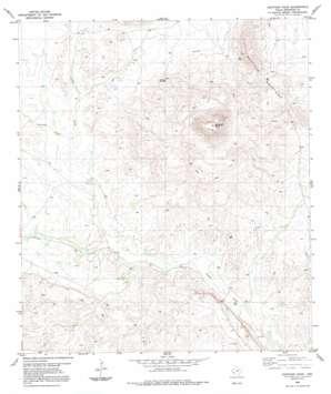 Santiago Peak topo map