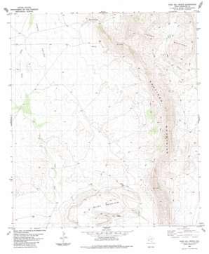 Paso Del Norte topo map