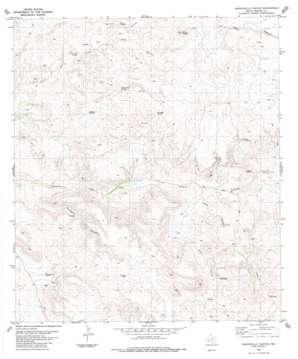 Manzanillo Canyon topo map