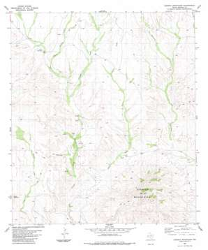 Cienaga Mountains topo map