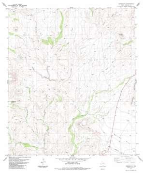 Cieneguita topo map