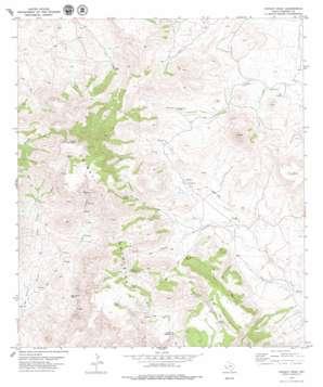 Chinati Peak topo map