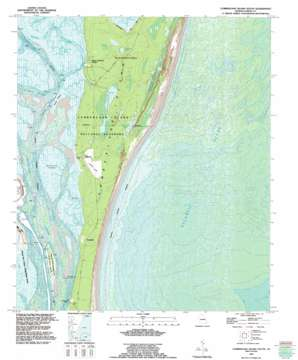 Cumberland Island South topo map