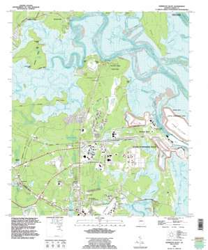 Harrietts Bluff topo map