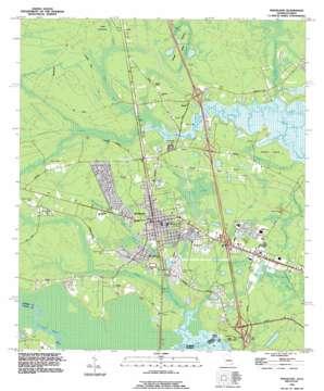 Kingsland topo map