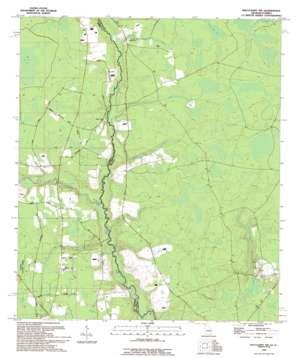 Macclenny Nw topo map