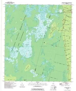 Chesser Island topo map