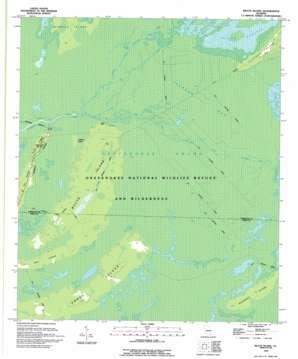 Billys Island topo map